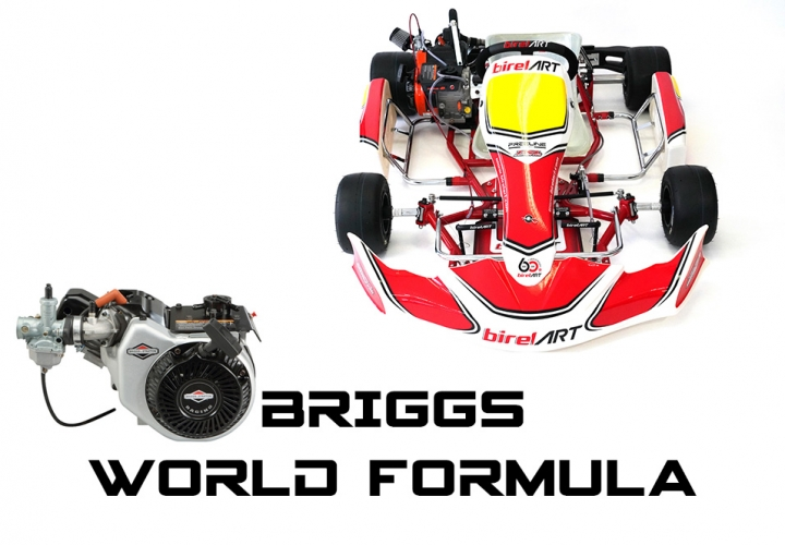 2019 AM29-S10 WITH BRIGGS WORLD FORMULA