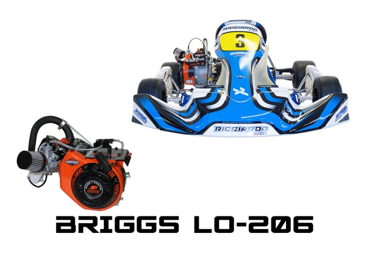 2021 DR-­AM29 S-12 WITH BRIGGS LO-206