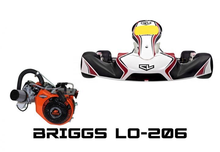 2020 CL-AM29 S11 WITH BRIGGS LO-206