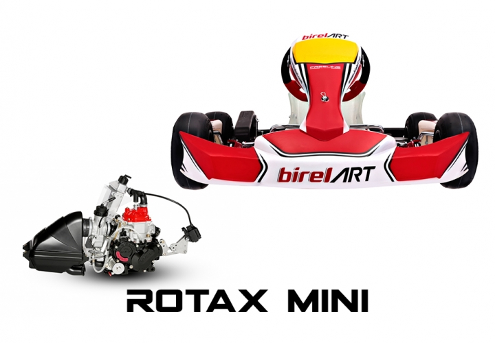 2020 C28-S11 WITH ROTAX MINI MAX