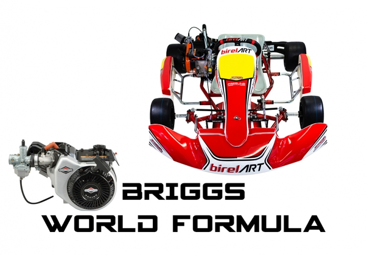 2020 AM29-S11 WITH BRIGGS WORLD FORMULA