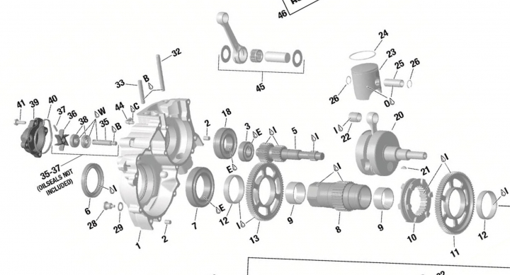 Rotax Parts DD2 PSL Karting store